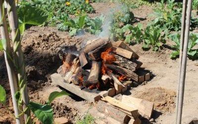 7 Juli: Koake in ein Loak